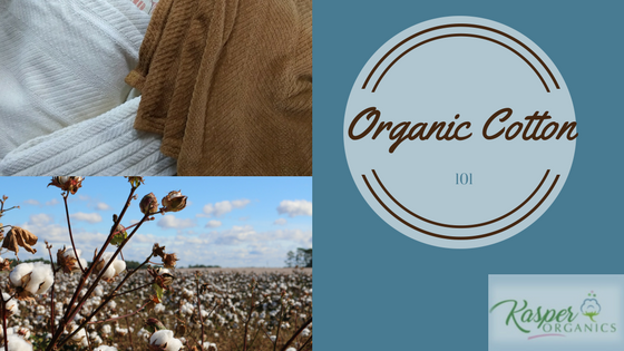 Organic Cotton 101 from Kasper Organics