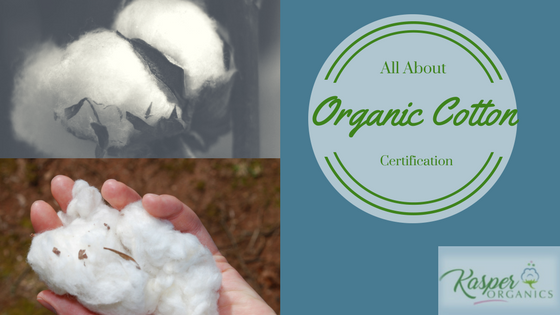 All About Organic Cotton Certification from Kasper Organics