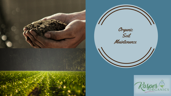 organic soil maintenance