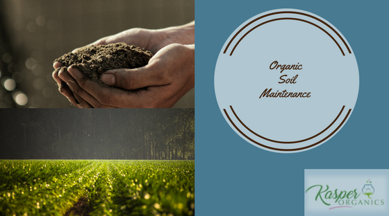 Organic Soil Maintenance for organic farms