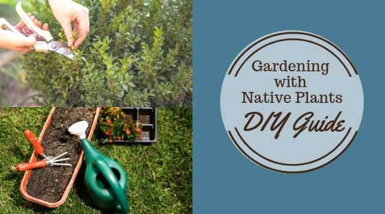 Gaardening with Native Plants DIY Guide